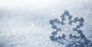 snowflakes-hero-image