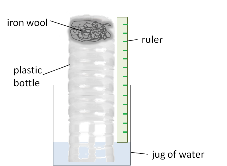Research paper on amylase image 1
